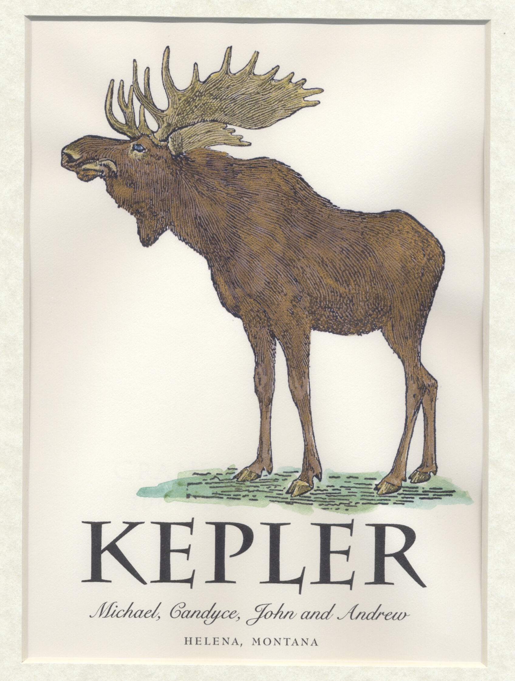 MOOSE.kepler.2011.jpg
