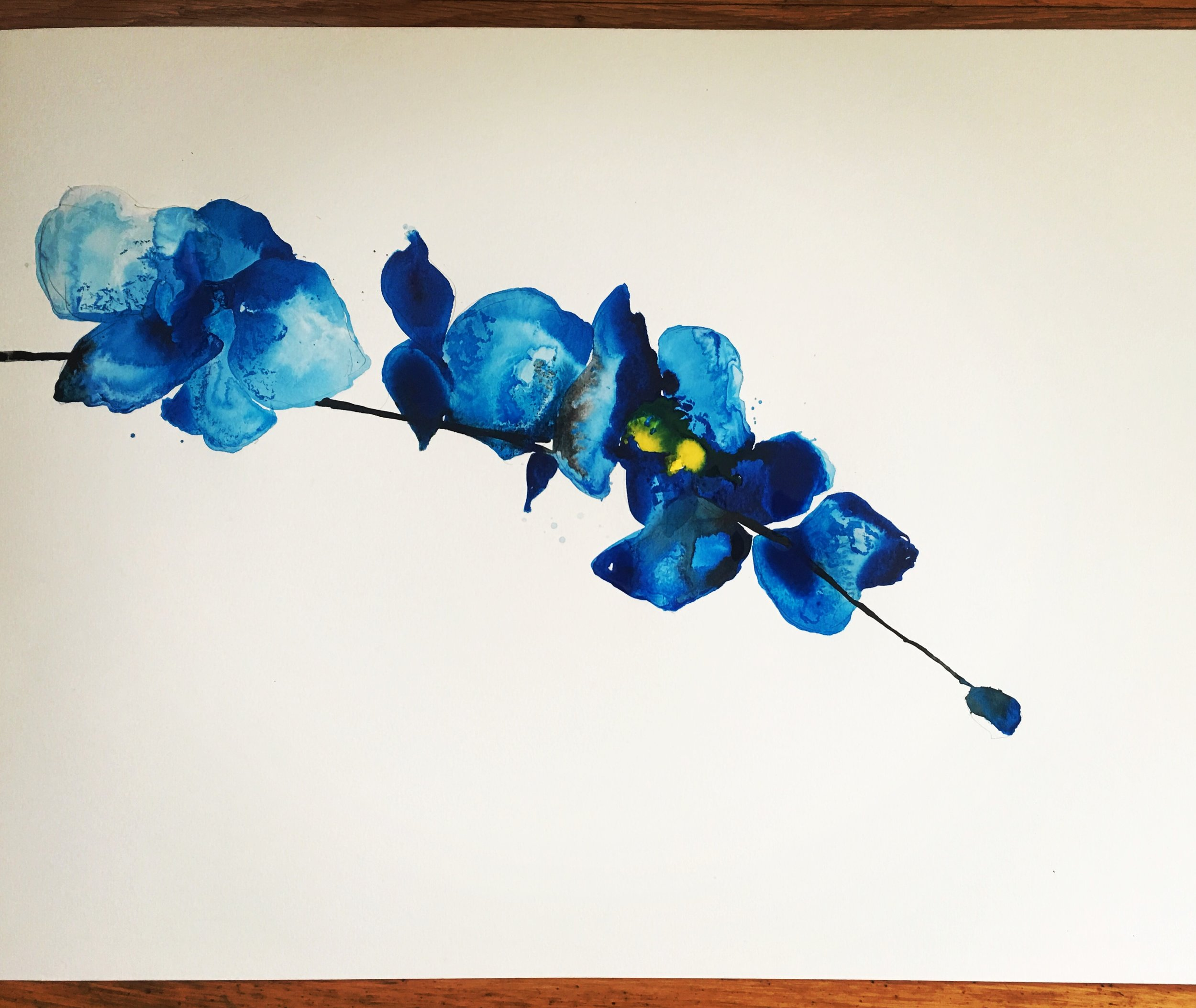 blue orchid 1 (SOLD)