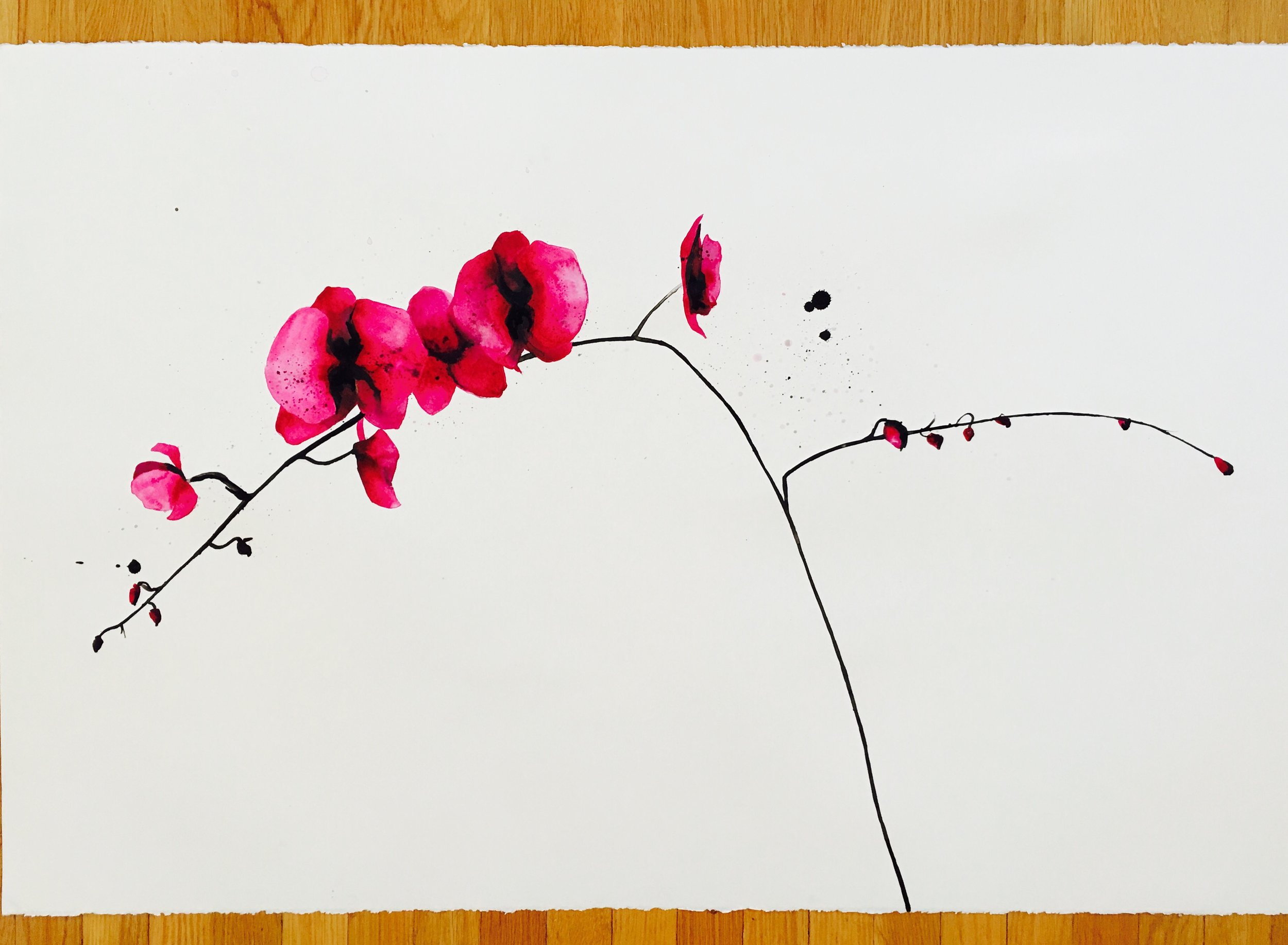 pink orchid 1 (inquire for price)