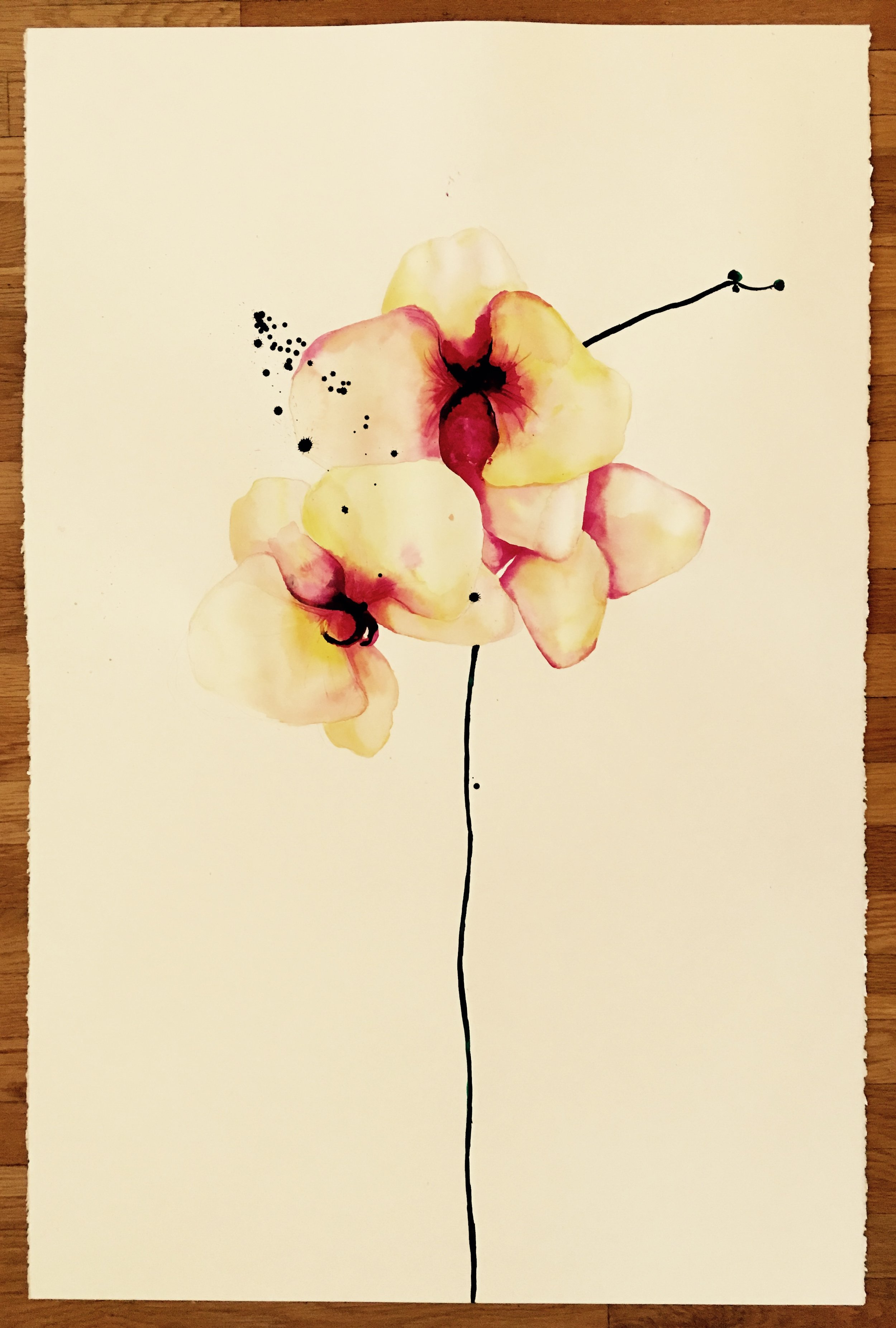 yellow orchid 1 (inquire for price)