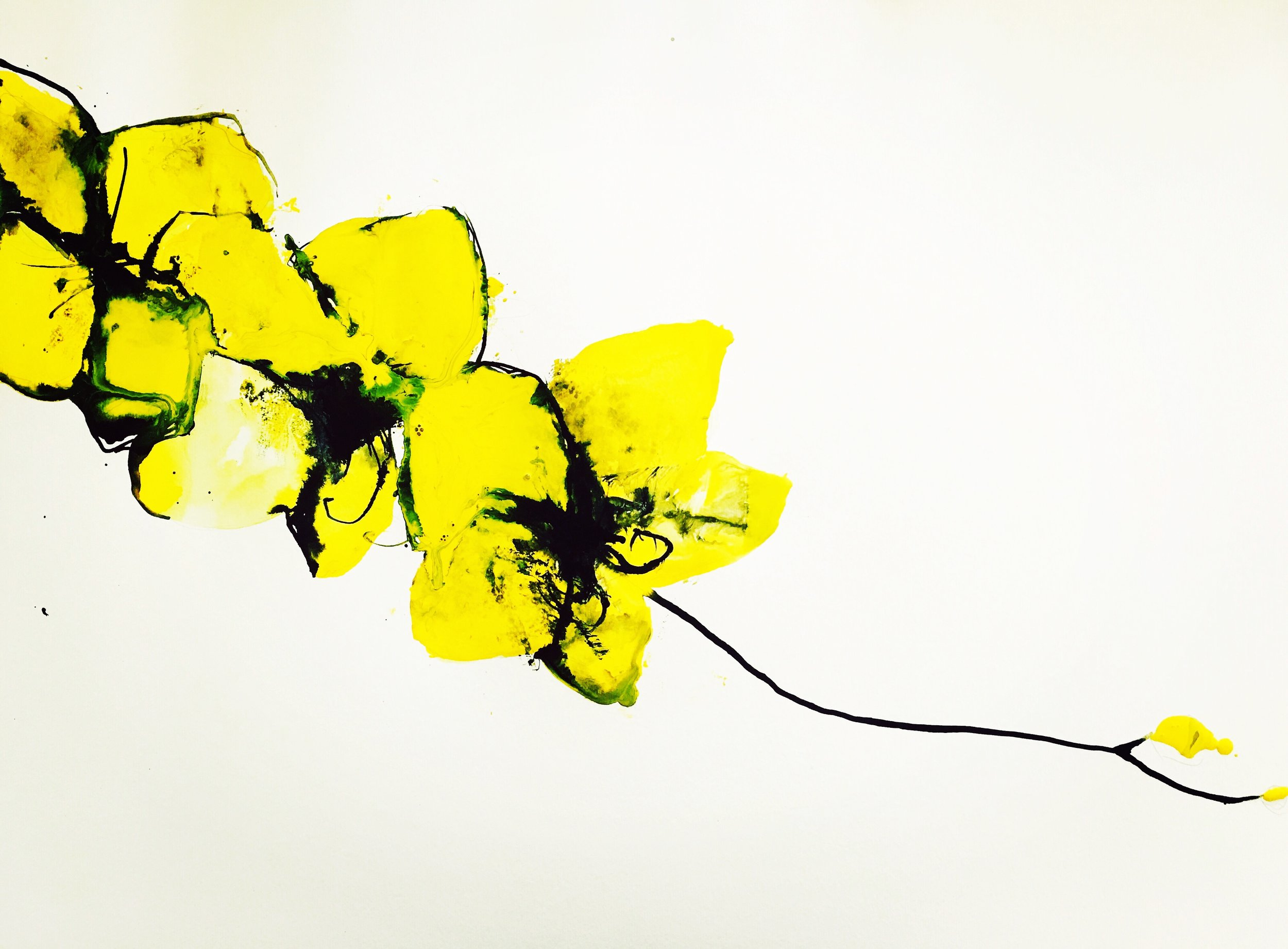 yellow orchid 2 (inquire for price)