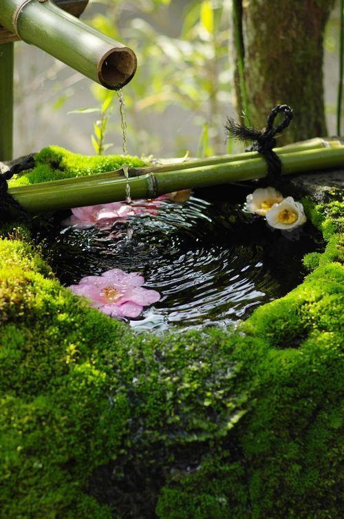 Spring water.jpg