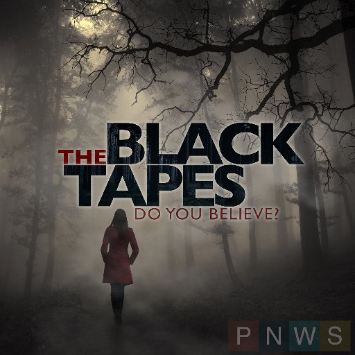 A serialized docudrama that investigates proof of the paranormal. It's up to you if you choose to believe the story or not.    Lovers of the X-files and Ghost Hunters will enjoy this one.