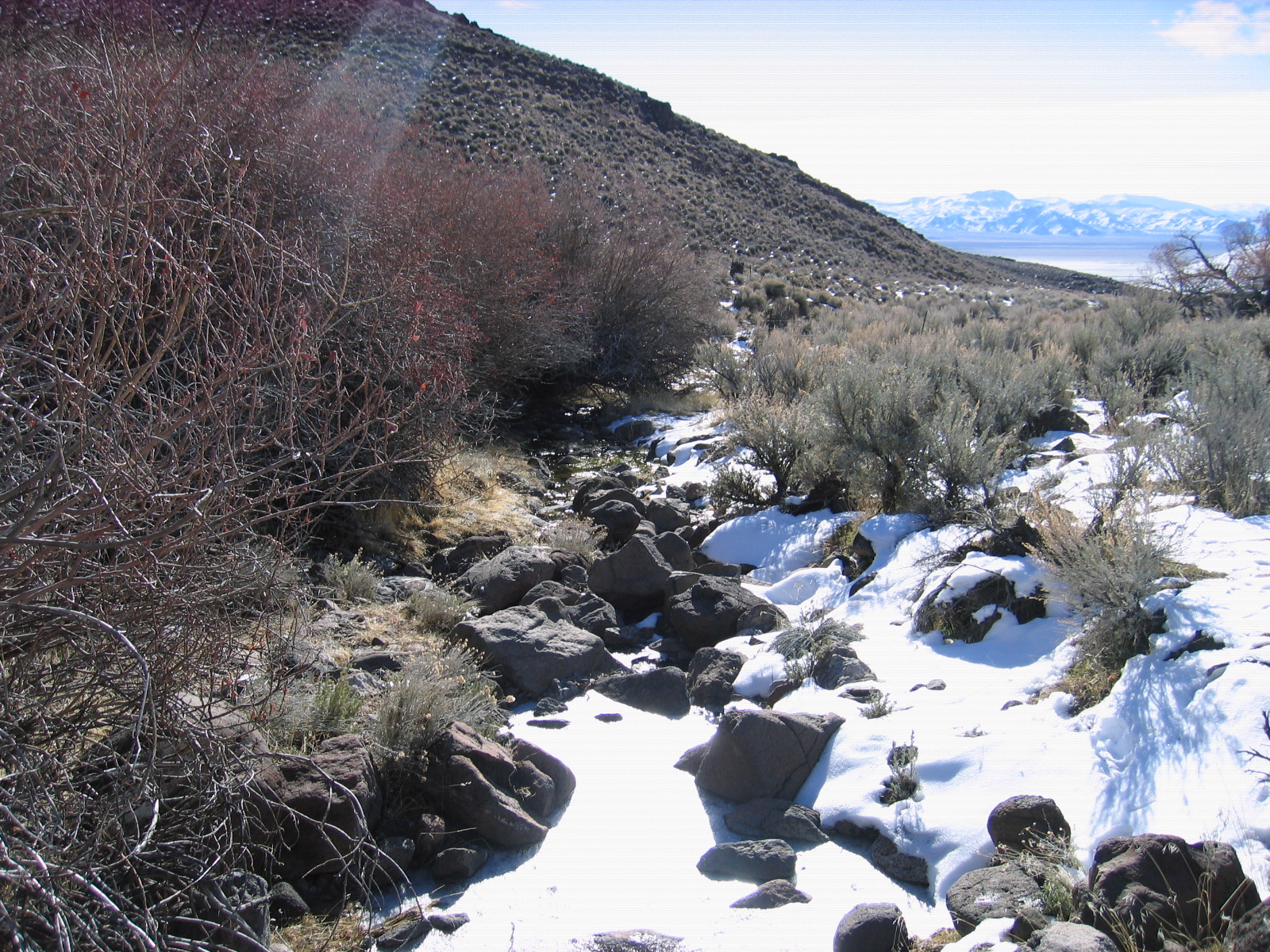 03-01-2011 Dove Creek 002.jpg