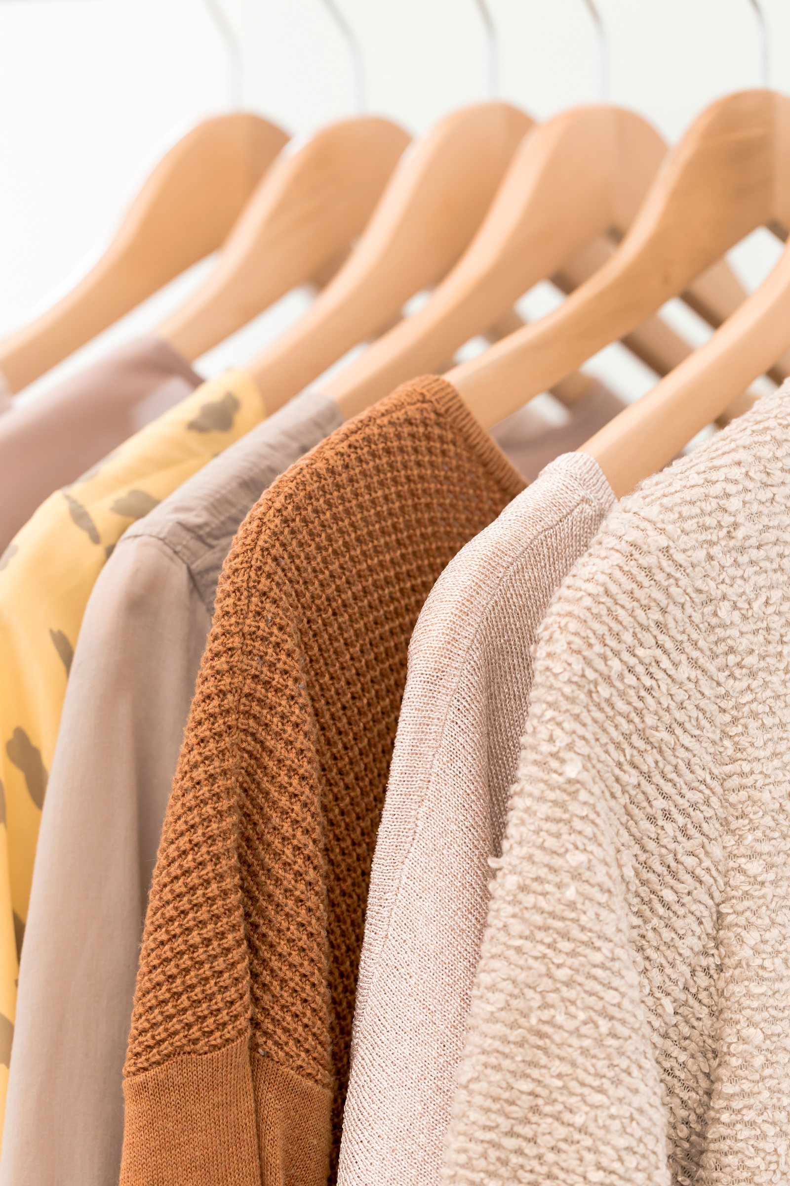 haute-stock-photography-muted-citrus-collection-final-3.jpg