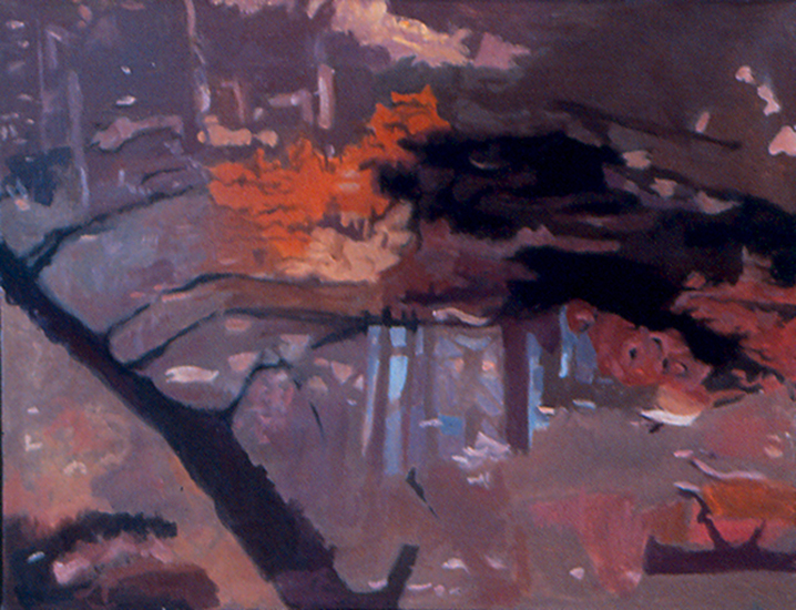 "Shadow of a Tree   , 1994, Oil on Linen, 14""x18"""