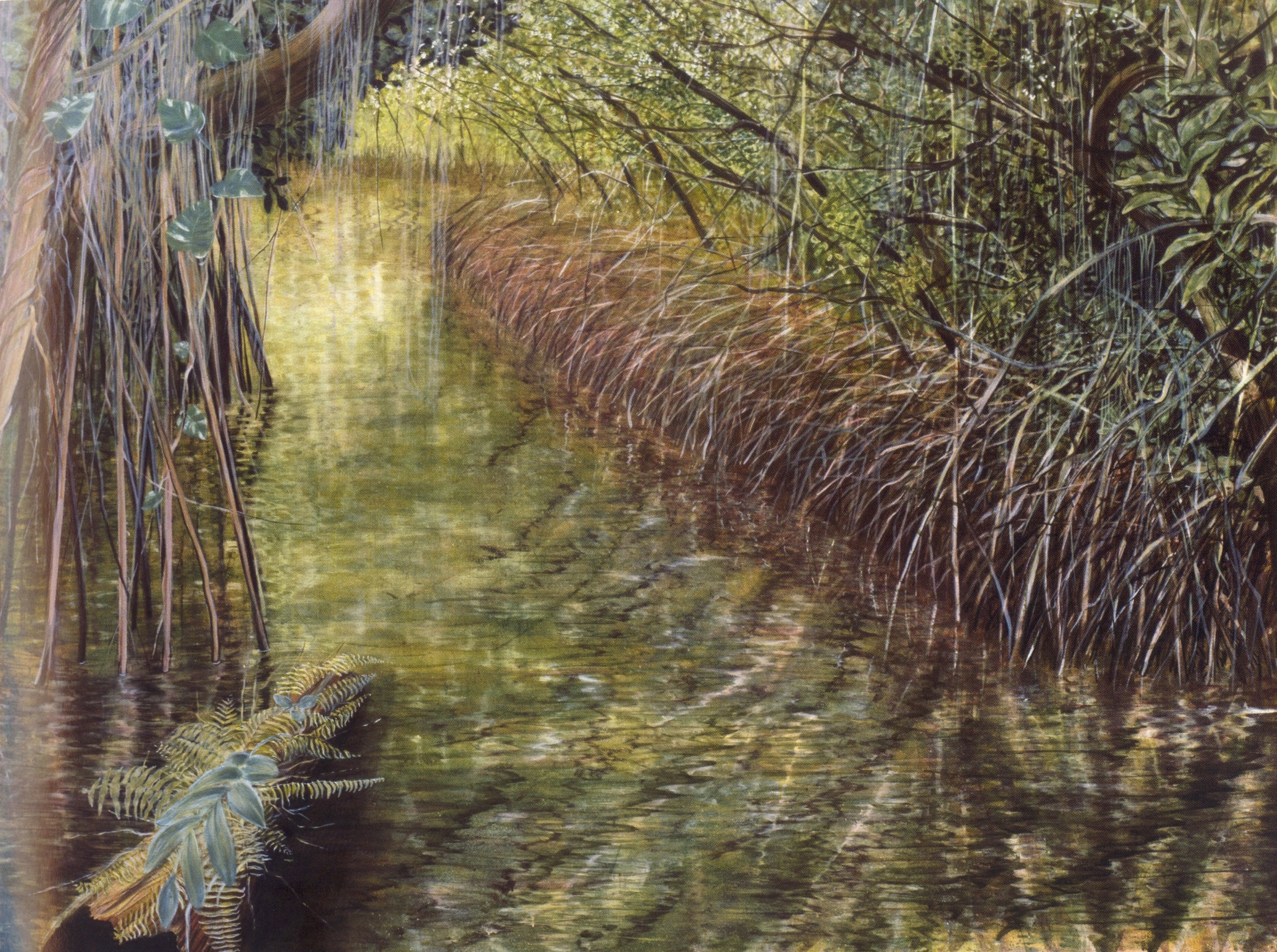 Everglades Missoni   Oil on canvas, 60'' x 70'', 2003