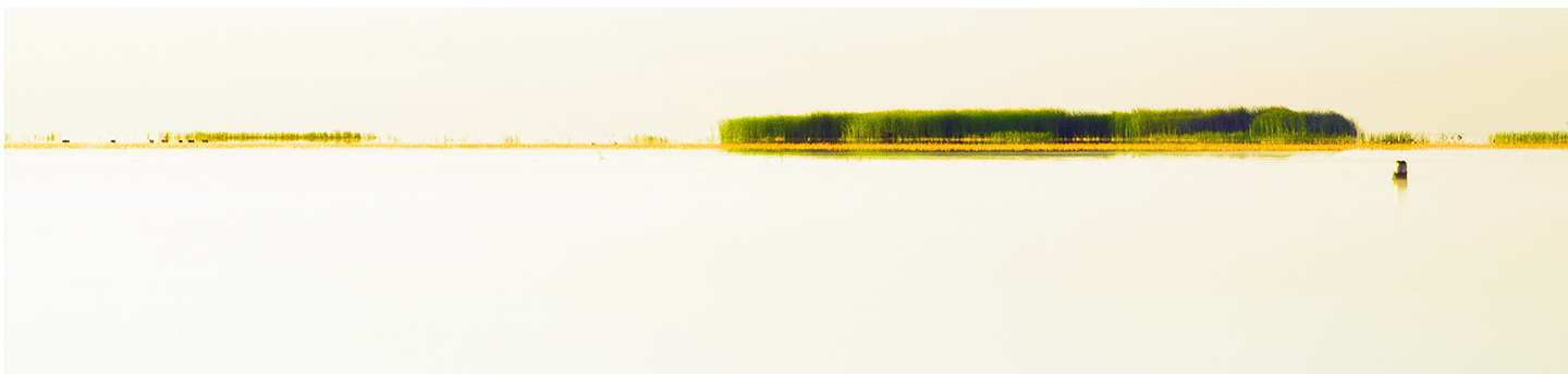 "Summer Island , 2014, Pigment Print, 7"" x 30"".  A small island sits near the top of a bay seen in early morning light."