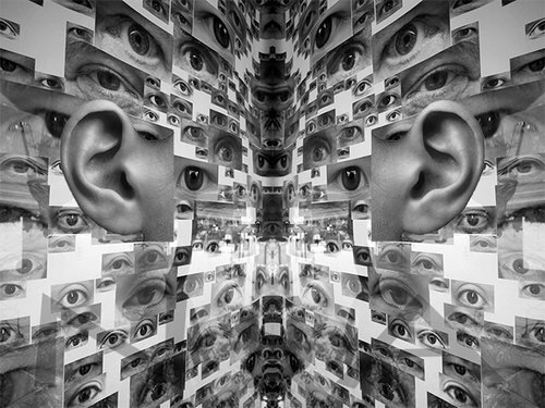 "Eyes and Ears, archival ink print on canvas, 26.5"" x 36"", Editions 4/10.  Abstract black and white photograph with collages of eyes and ears."