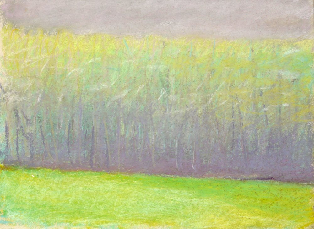 """May Tree Line (SOLD), 1993, Pastel, 9"""" x 12""""  Treescape with light green foreground, green and gray trees and gray sky"""