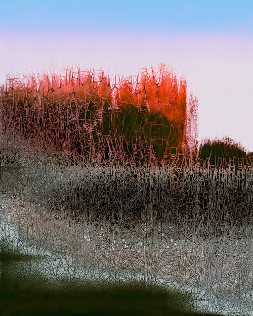 """Evening (edition 4 of 10),  2016  ,   Chemigram, 29.5"""" x 25.5""""(Framed) 20"""" x 16"""" (Wo/Frame).  Abstract landscape photographic print of green grass and thin gray tree branches, red flowers on the horizon with blue and pink sky."""