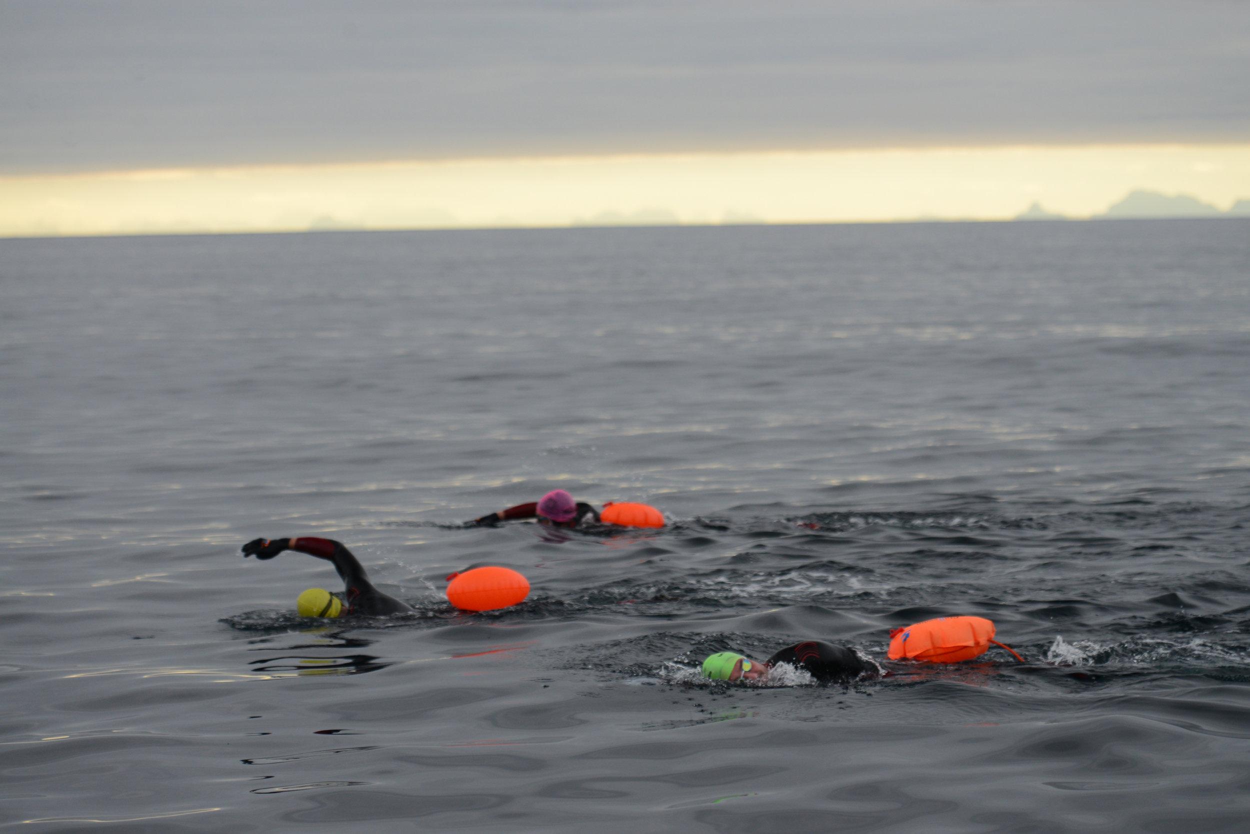 8km swim in the Arctic Circle in protest of oil drilling in the Lofoten Islands.