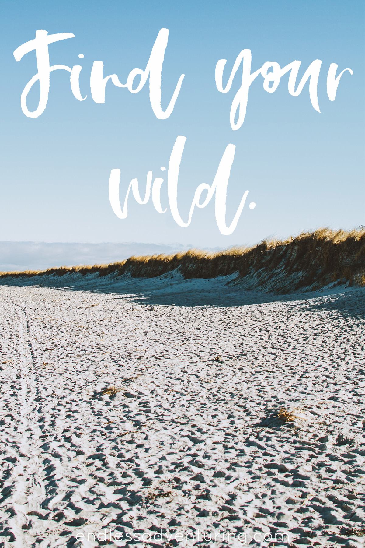 Adventure Quote - Find Your Wild