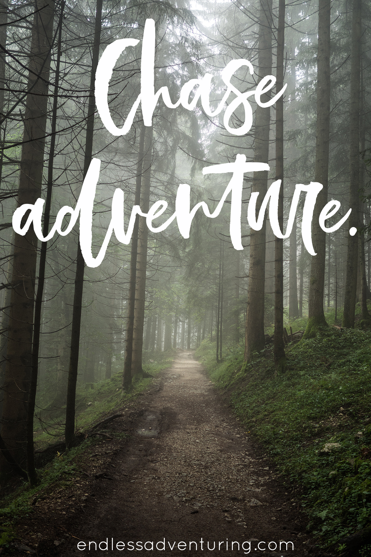Adventure Quote - Chase Adventure