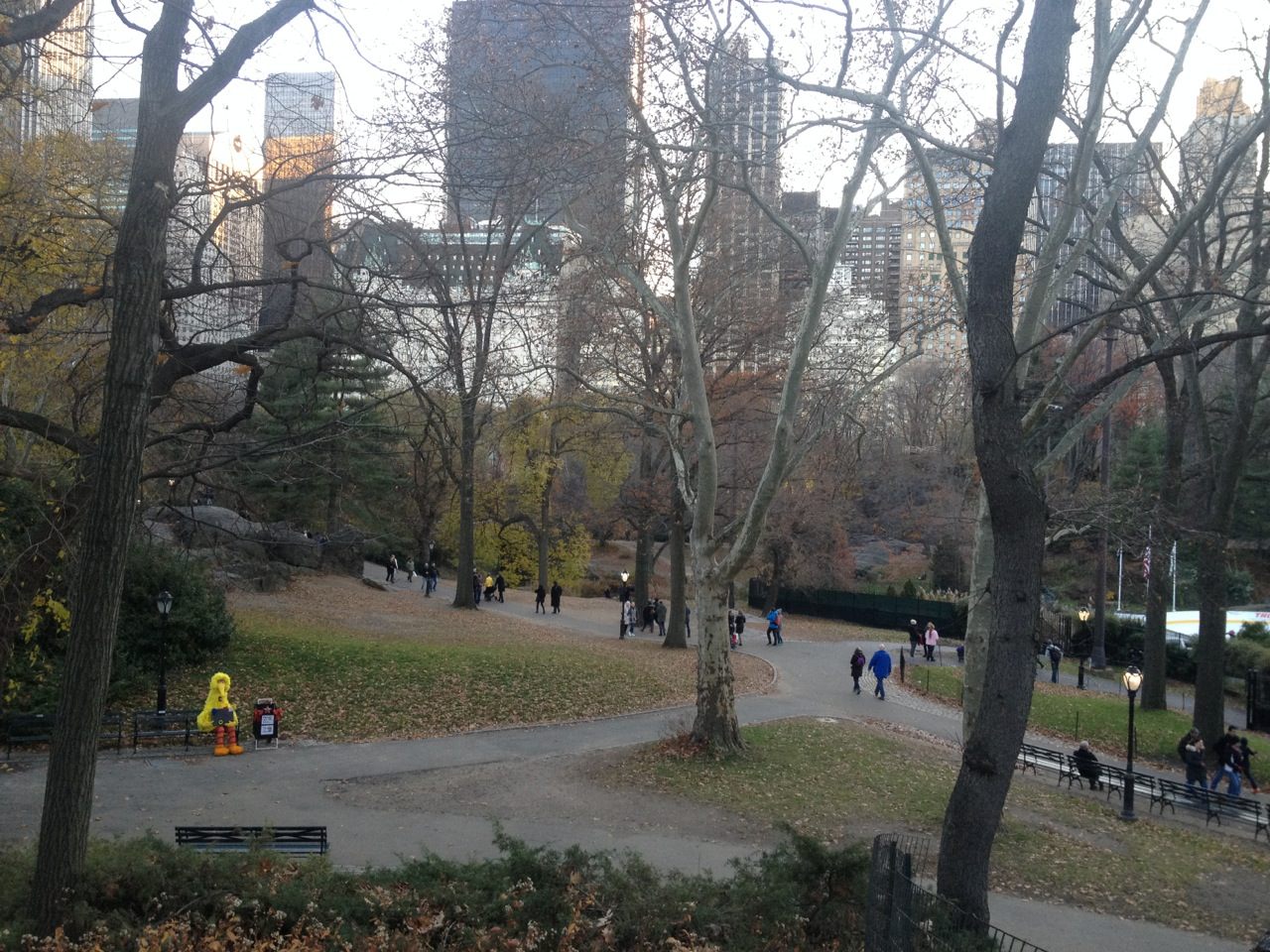 Creative genius Big Bird takes lunch in Central Park