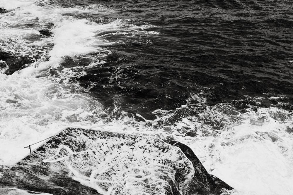 Monica Shulman-Black and White in Nature