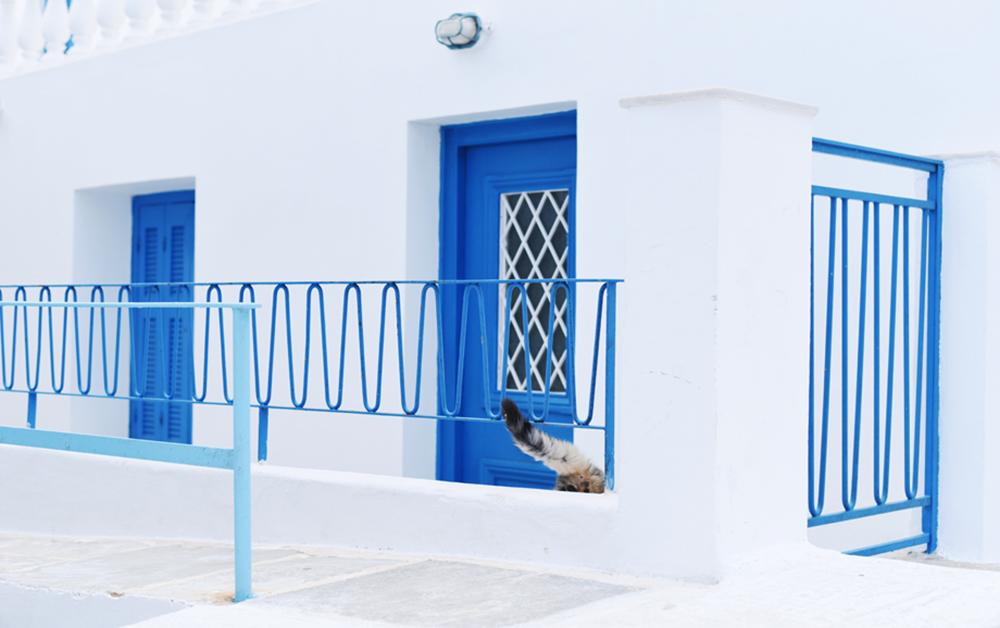 Monica Shulman-Greece 2