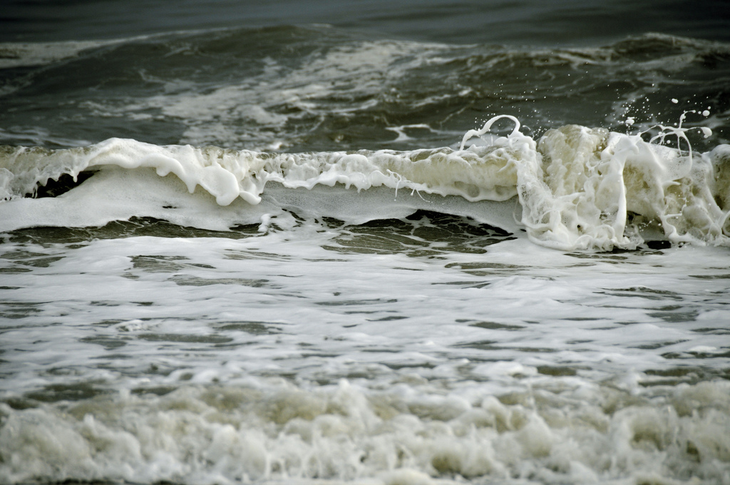 """""""Alive"""" - Captured in Montauk, New York, this photograph inspired the paintings below."""