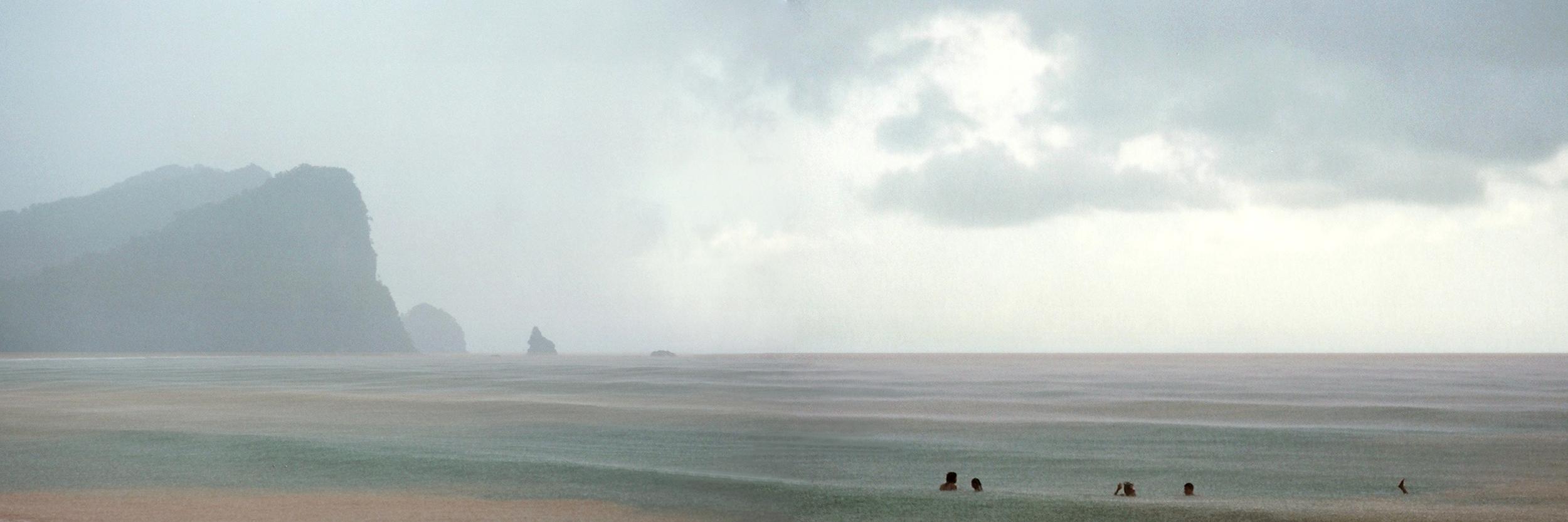 "Congua Panorama II, Venezuela  30"" x 90"",2009"