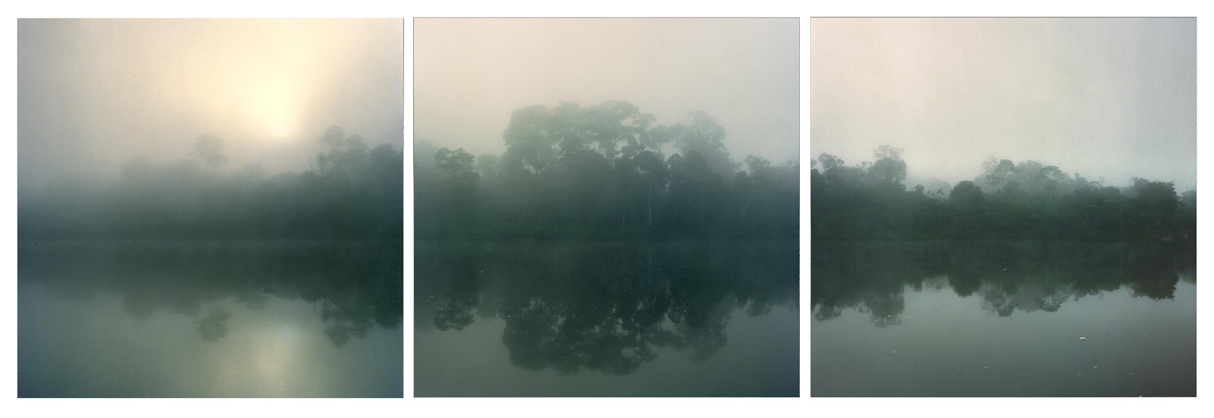 """Surinam Sunrise,   3 images,30"""" x 30"""", 2005"""