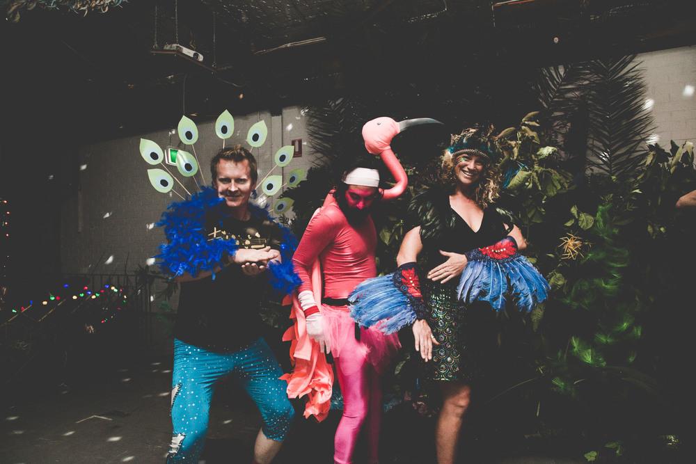 0G4A2551Birds+of+Paradise+party++2016-+photoKateLongley82.jpg