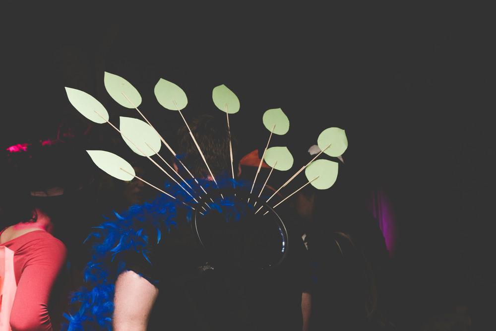 0G4A2554Birds+of+Paradise+party++2016-+photoKateLongley84.jpg