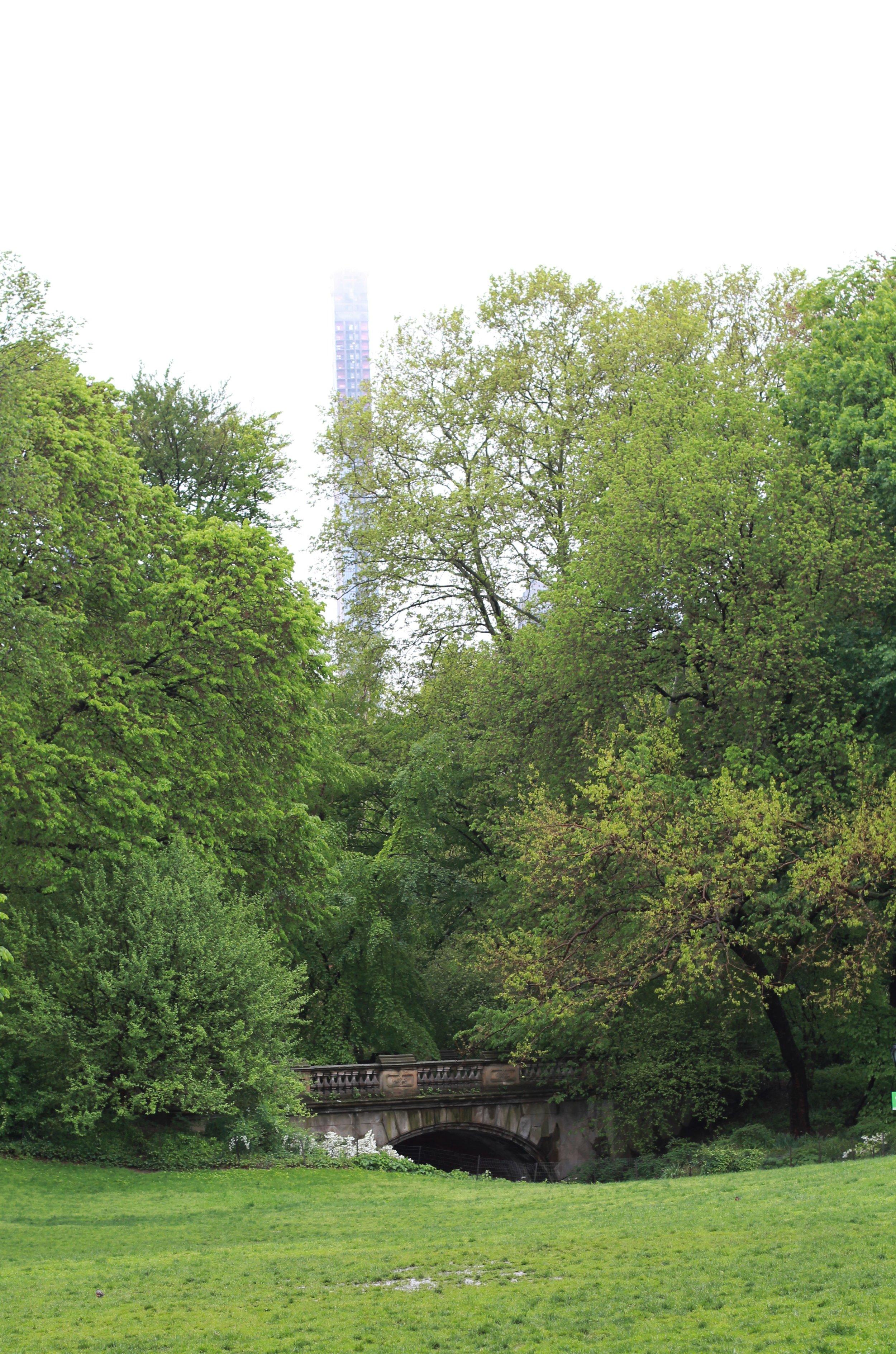new.york.city-central.park.jpg