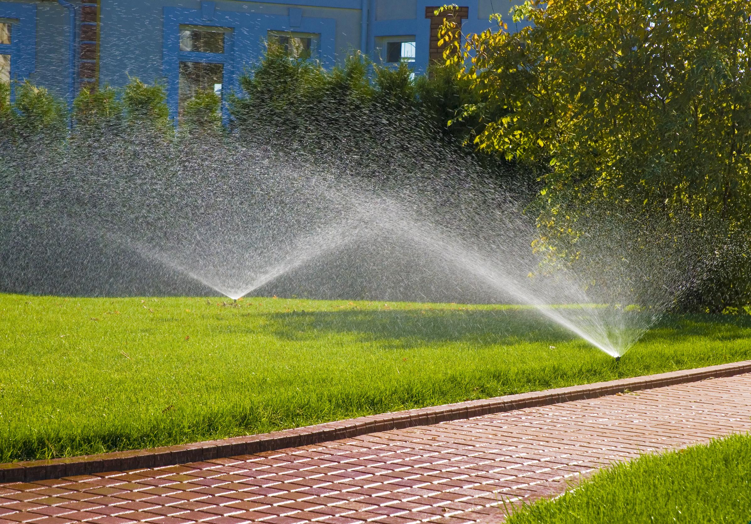 lawn_water_fertilizer_delivery.jpg