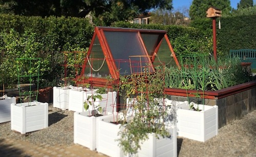 Brentwood Urban Farm in Los Angeles has 20 organic garden beds, 22 fruit trees, rain barrels, graywater systems, solar panels, and xeriscaping.