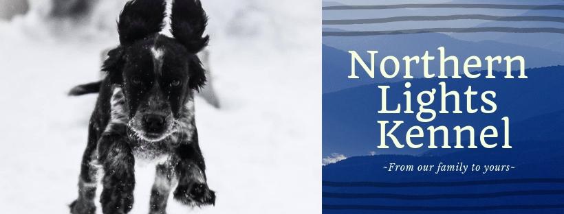 Copy of Northern Lights Kennel.jpg
