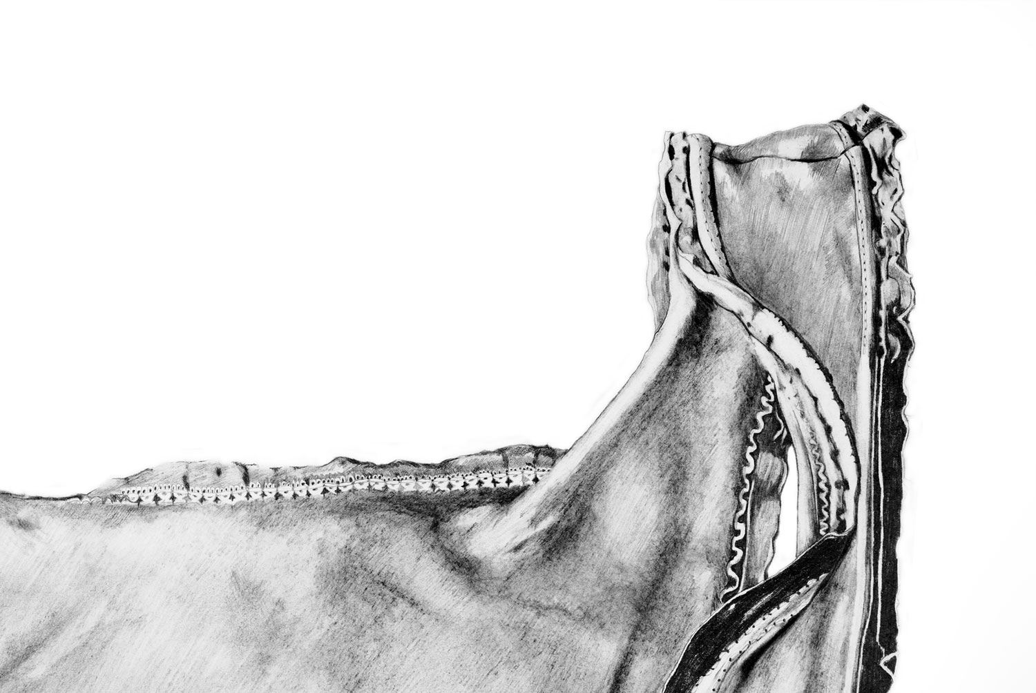Singlet (detail)   Materials:  Graphite on paper   Date of Creation:  2006  Collection of Wardlow Art Residency, Melbourne