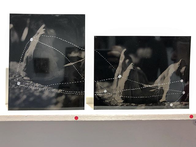 New work, Flight Path off to a loving home in Daylesford. I'm glad these tintypes will stay together. #tintypes #incised