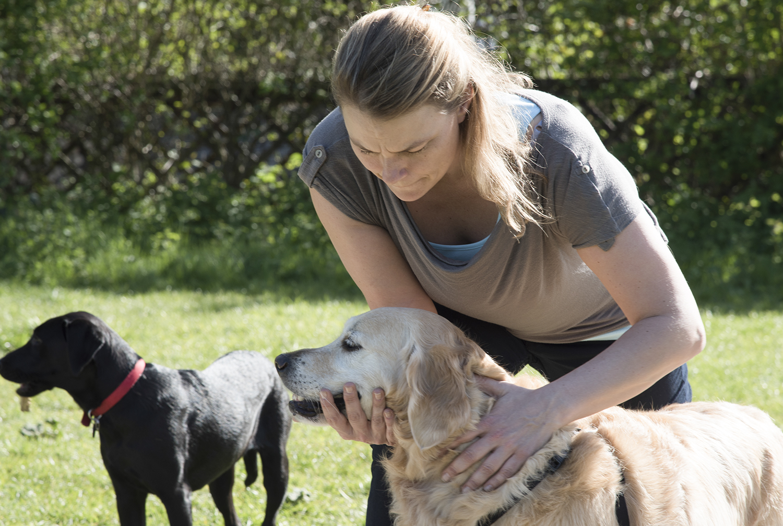 Caroline Jack Canine Osteopath