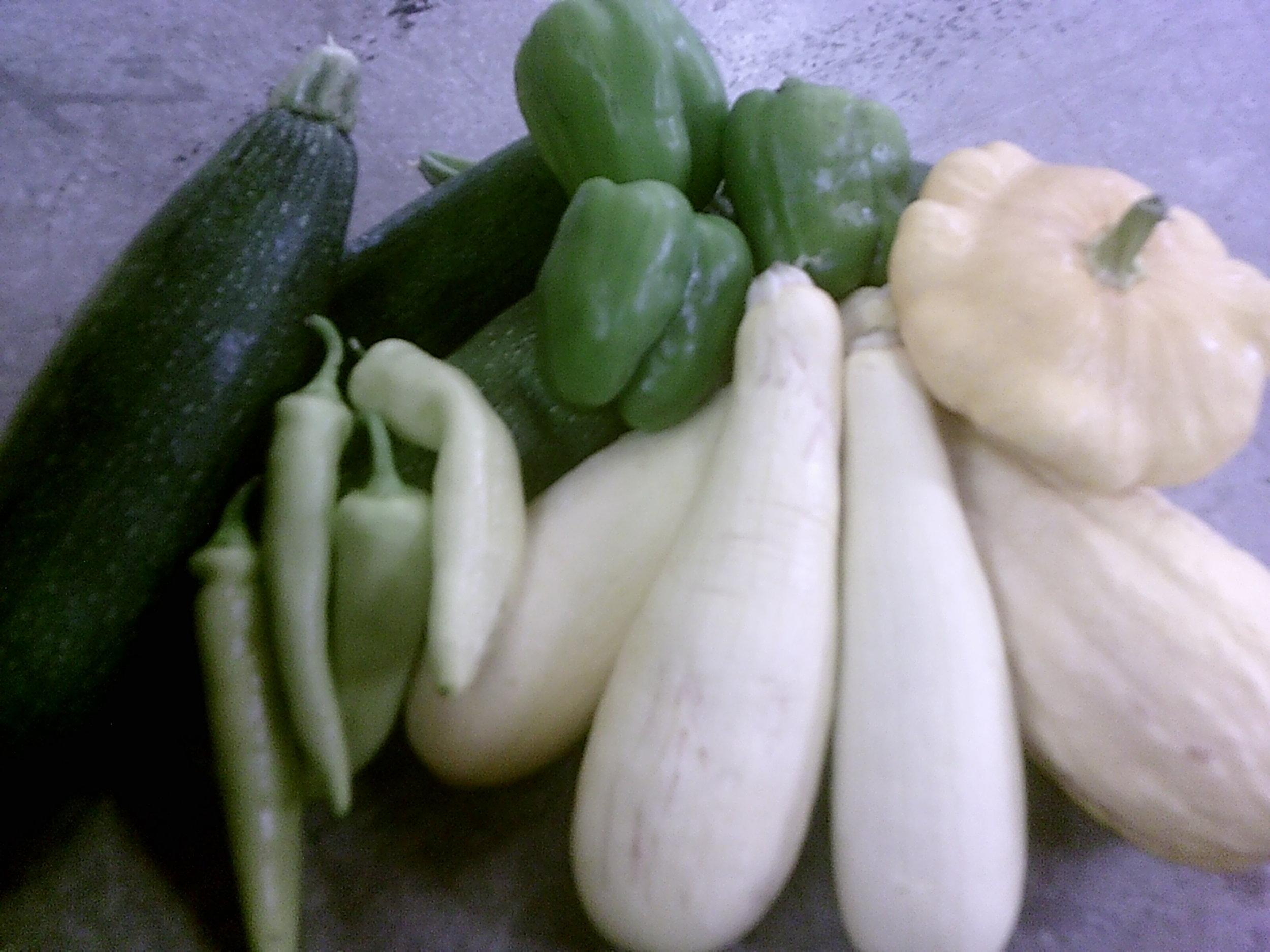 squash,zucc,peppers,.JPG