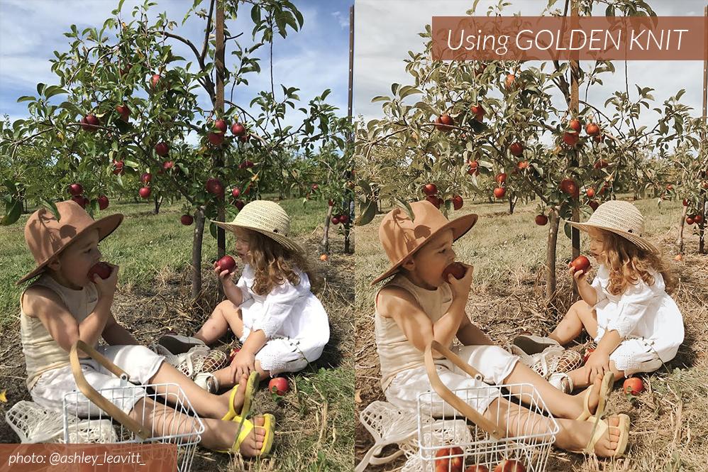 Cozy BA Golden Knit 03.png
