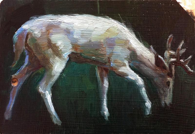 White Stag IV