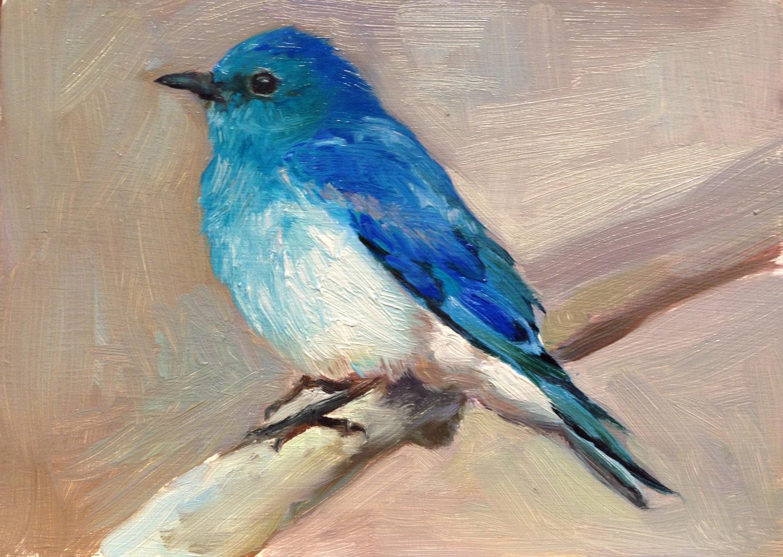Mountain Bluebird II