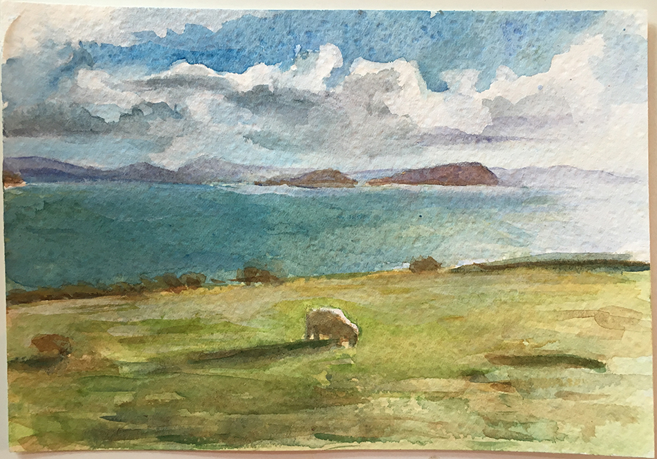 Ballinskelligs Sheep II
