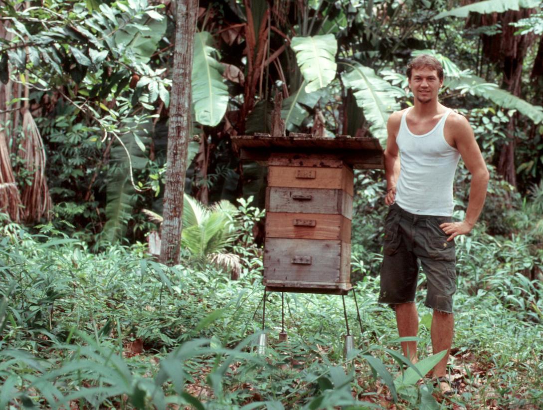 David 2008 in Brasilien