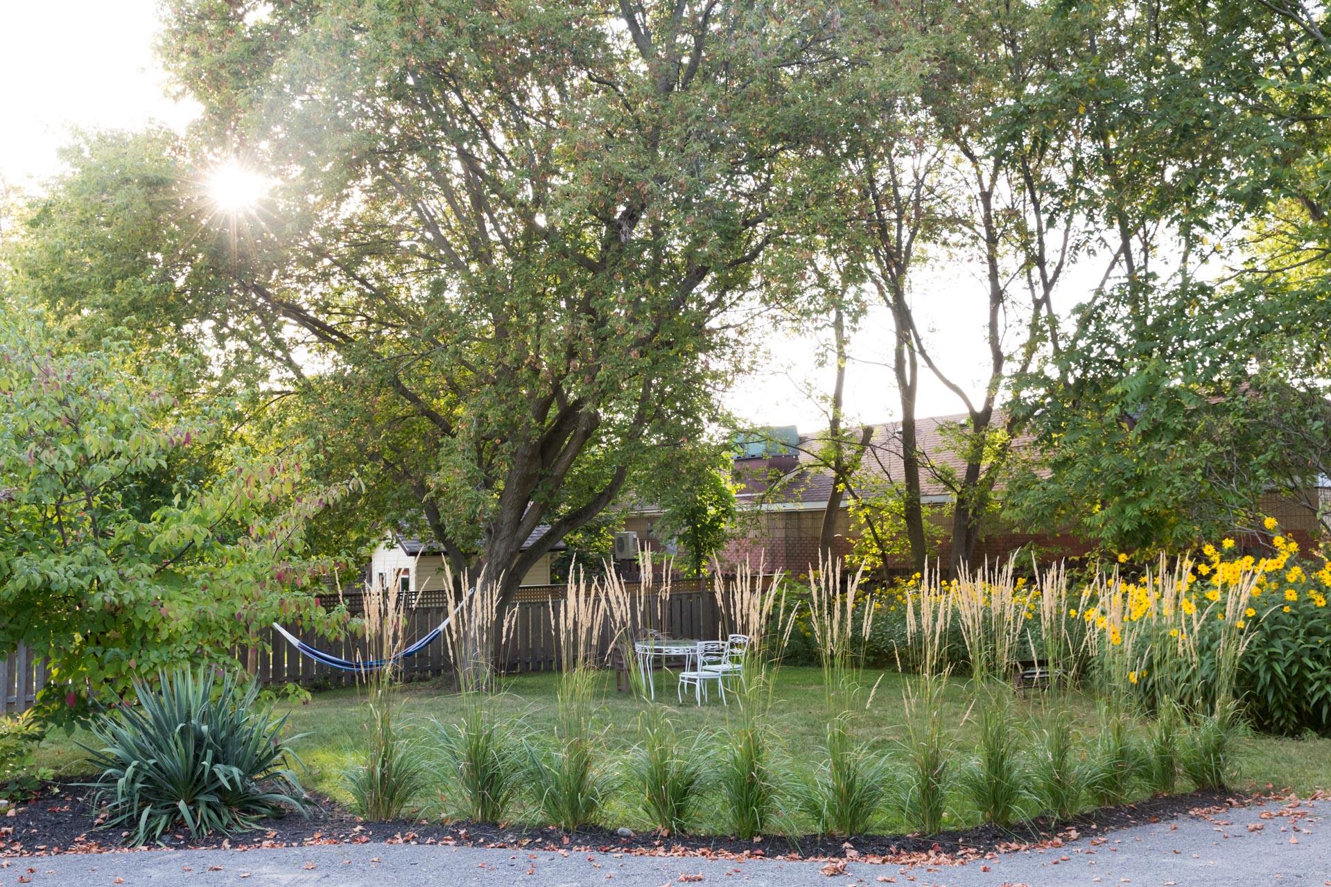 landscaped backyard at The Ferg