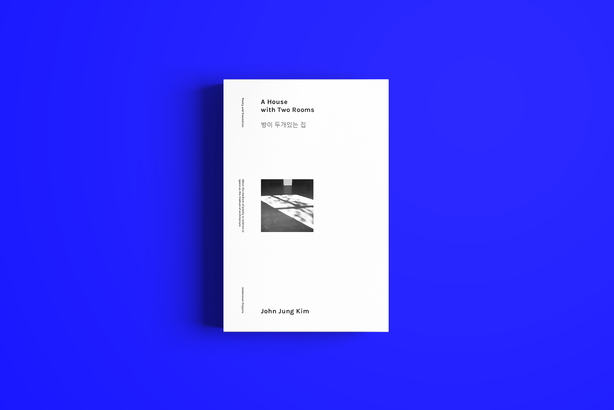 A House with Two Rooms  A book of poetry and translation work that contemplates the medium of poetry in relation to space as a medium of architecture. A curated selection of transcribed interviews, quotations, and video stills accompanies the poems.