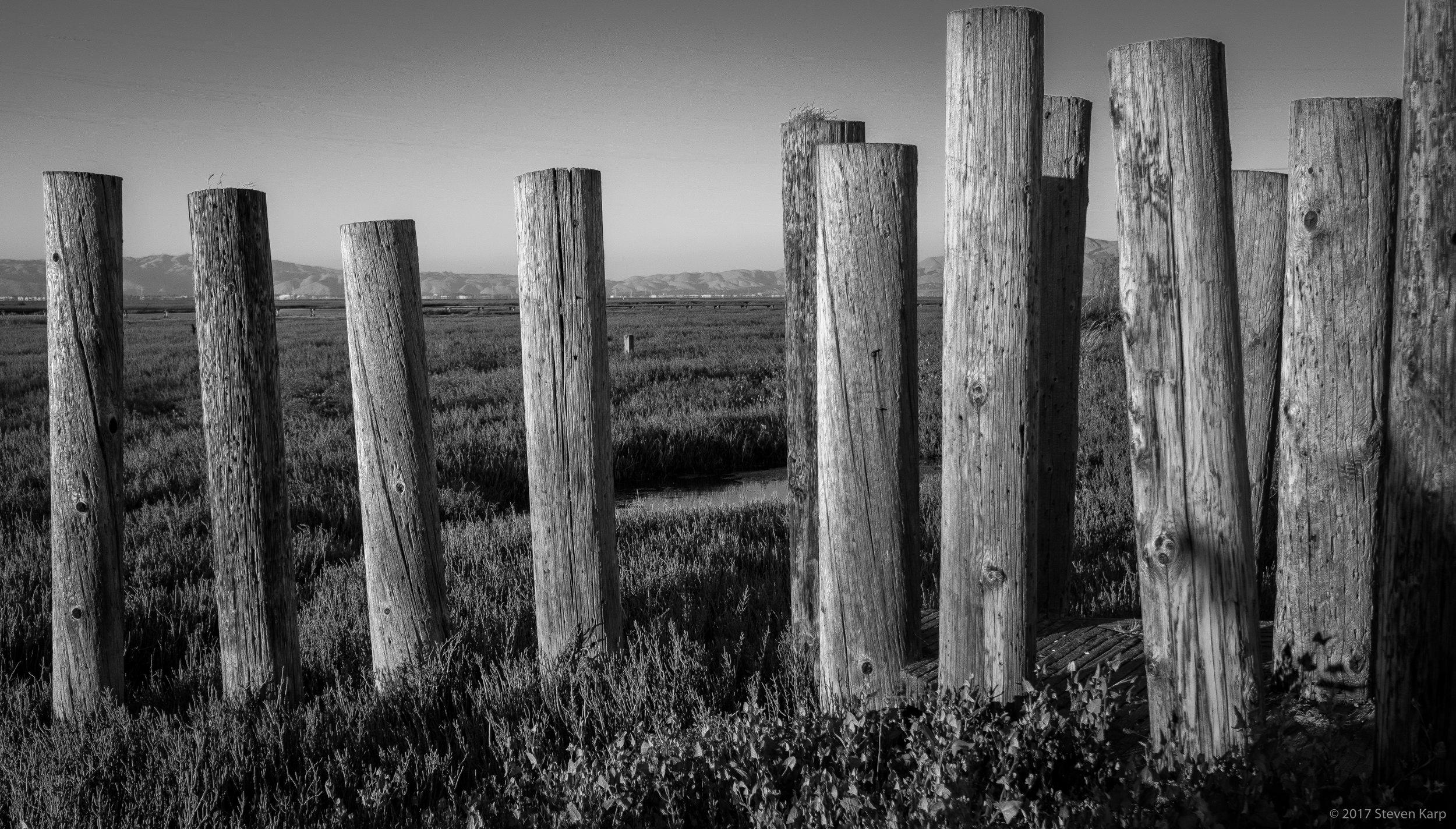 Pylons, Baylands Nature Preserve