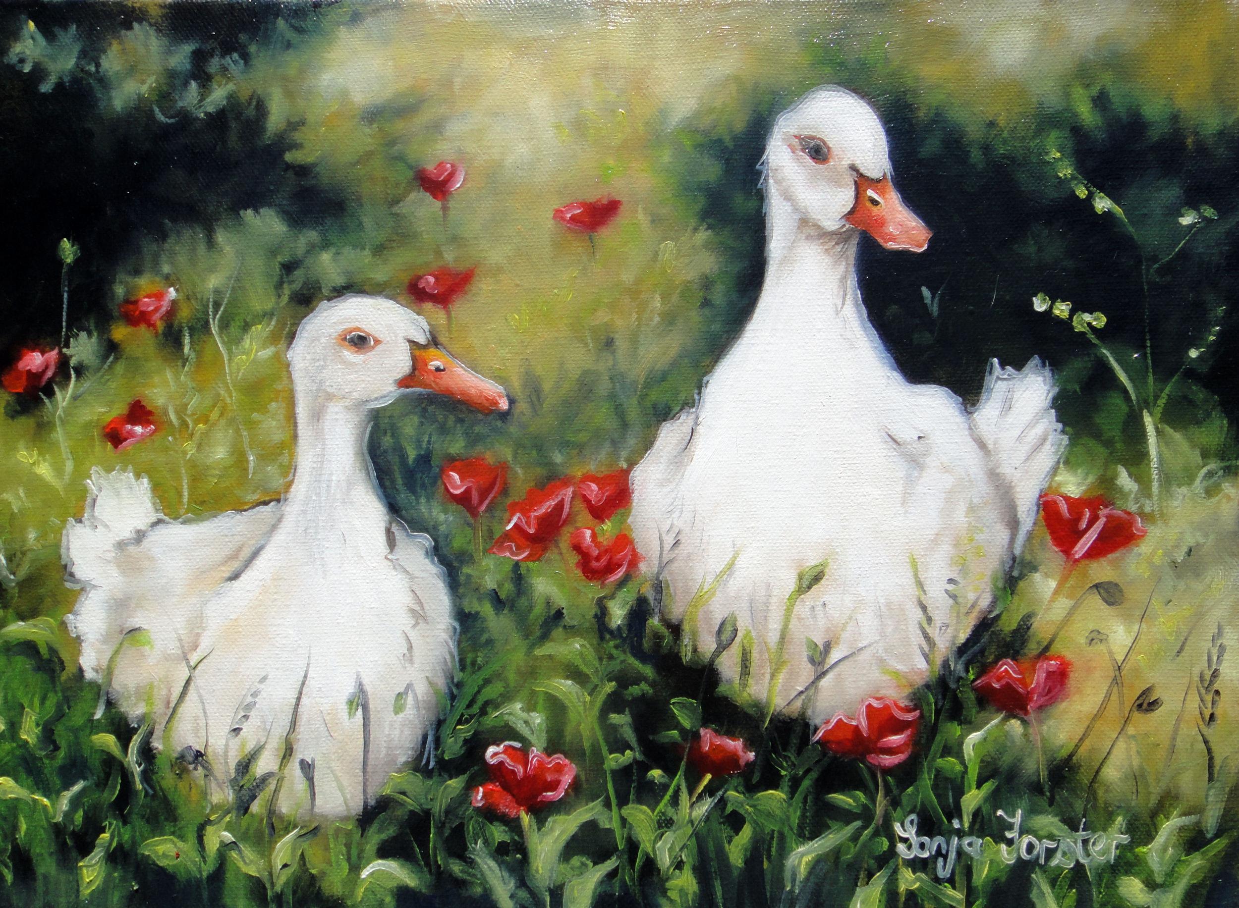 Sonja Forster Art - Wit Eende.jpg