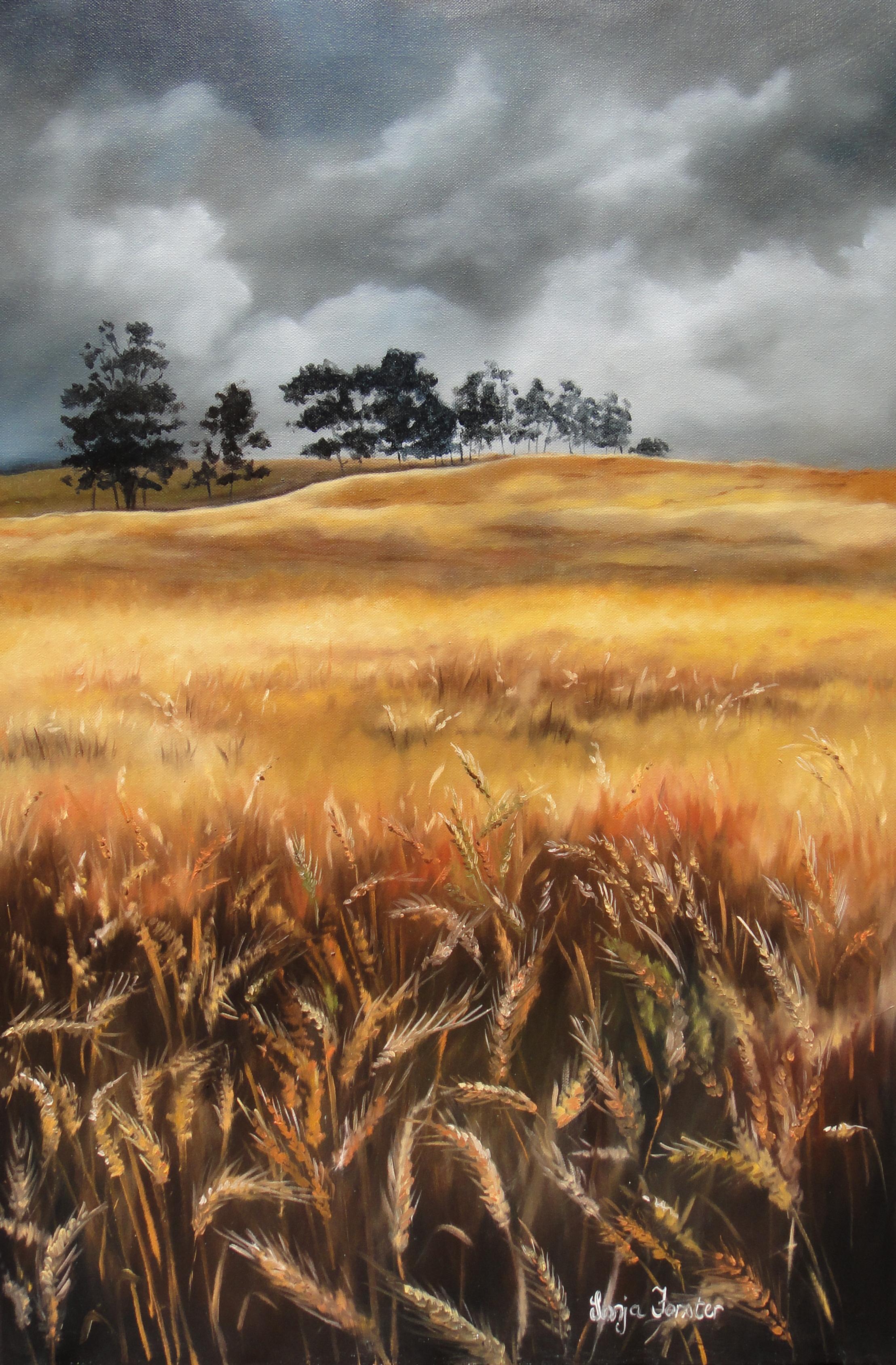 Sonja Forster Art - Storm oor koring veld.jpg