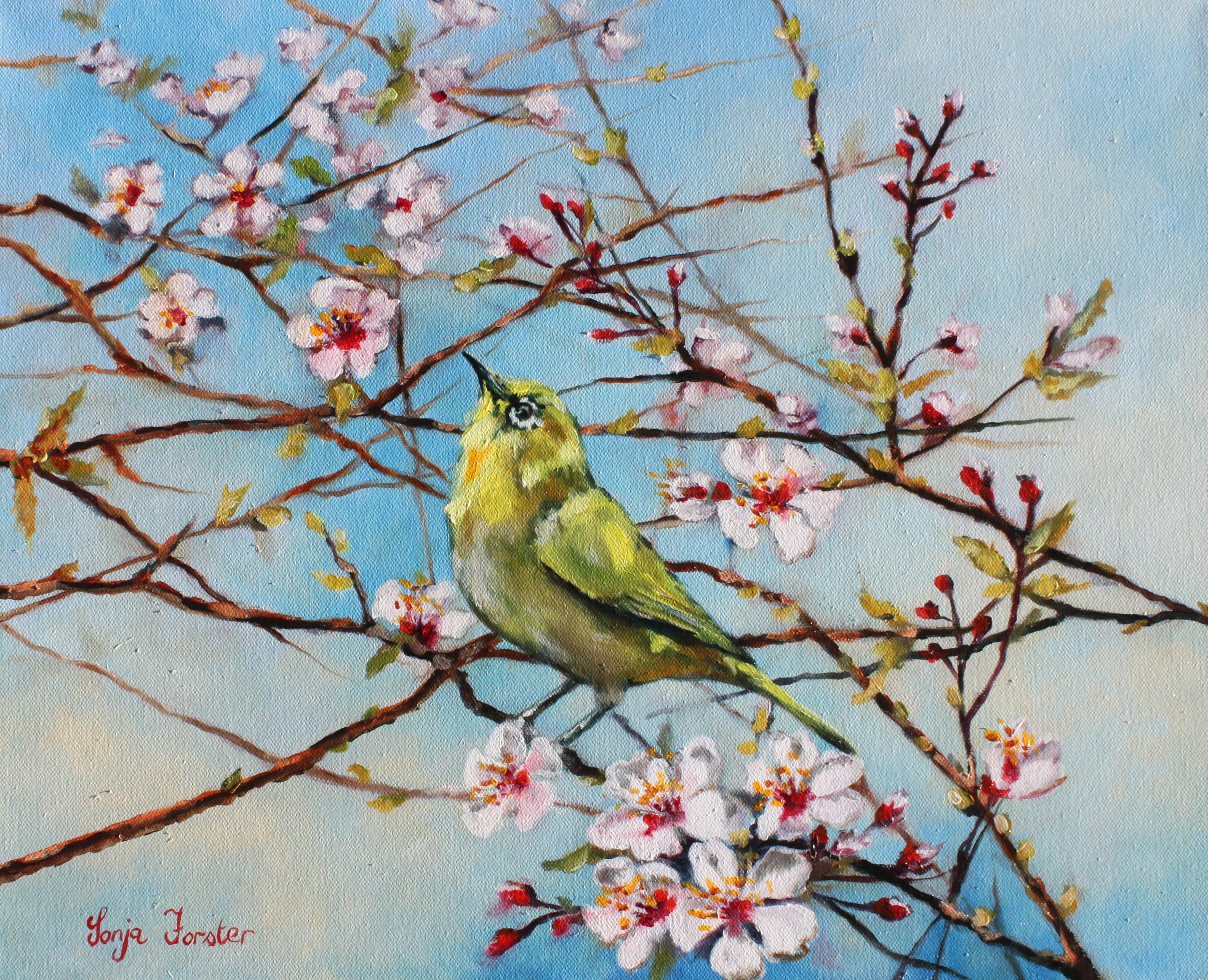 Sonja Forster Art - Spring Cherry Blossoms.jpg