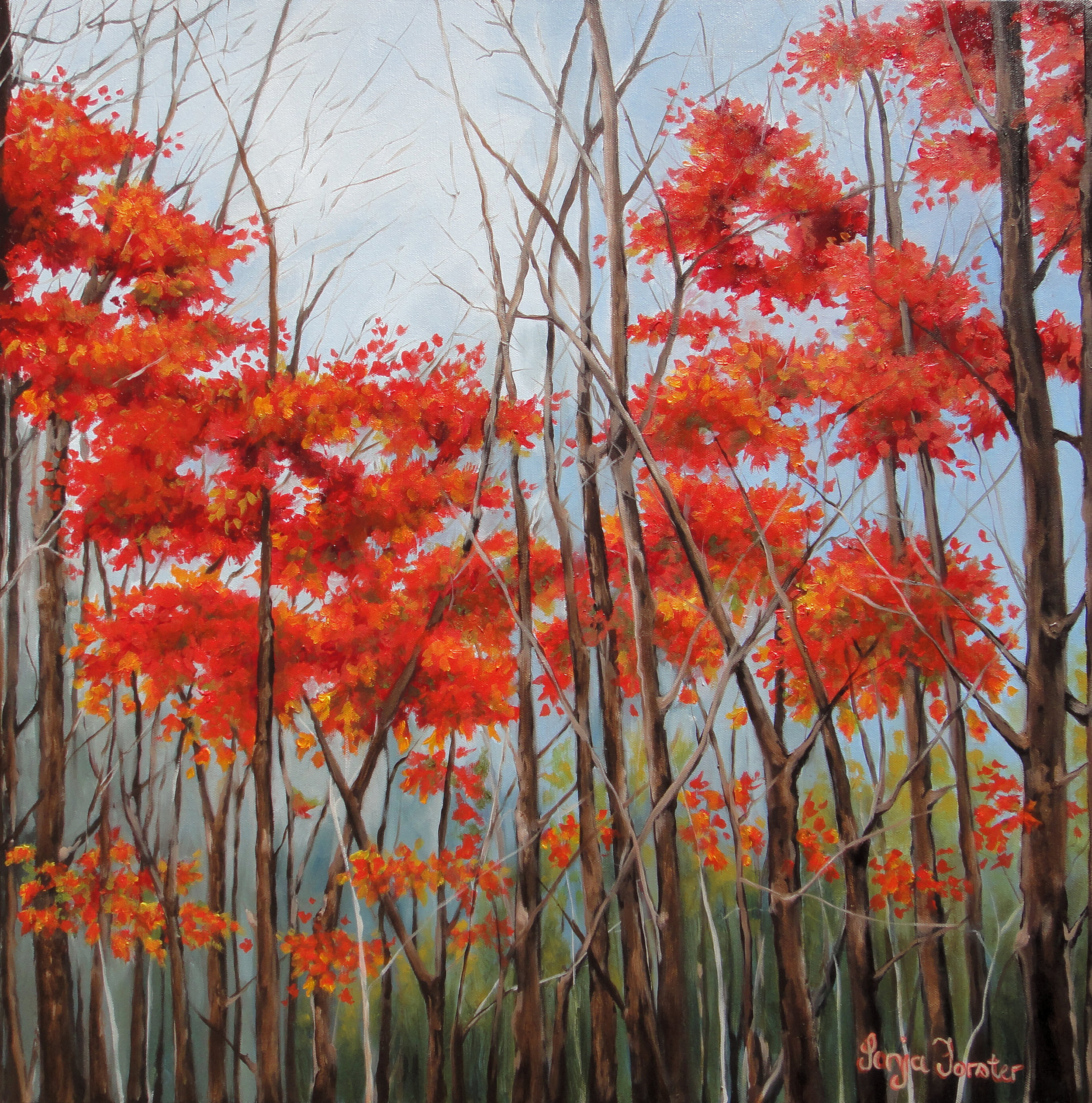 Sonja Forster Art - Red Forrest.jpg