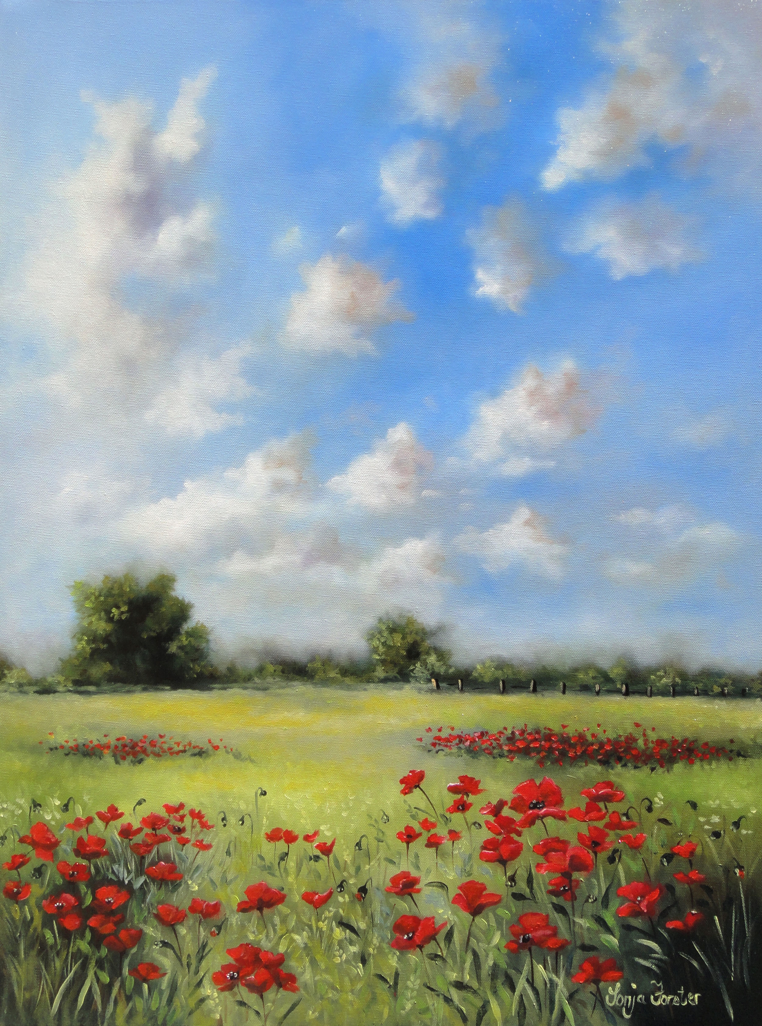 Sonja Forster Art - Summer Poppy Field.jpg