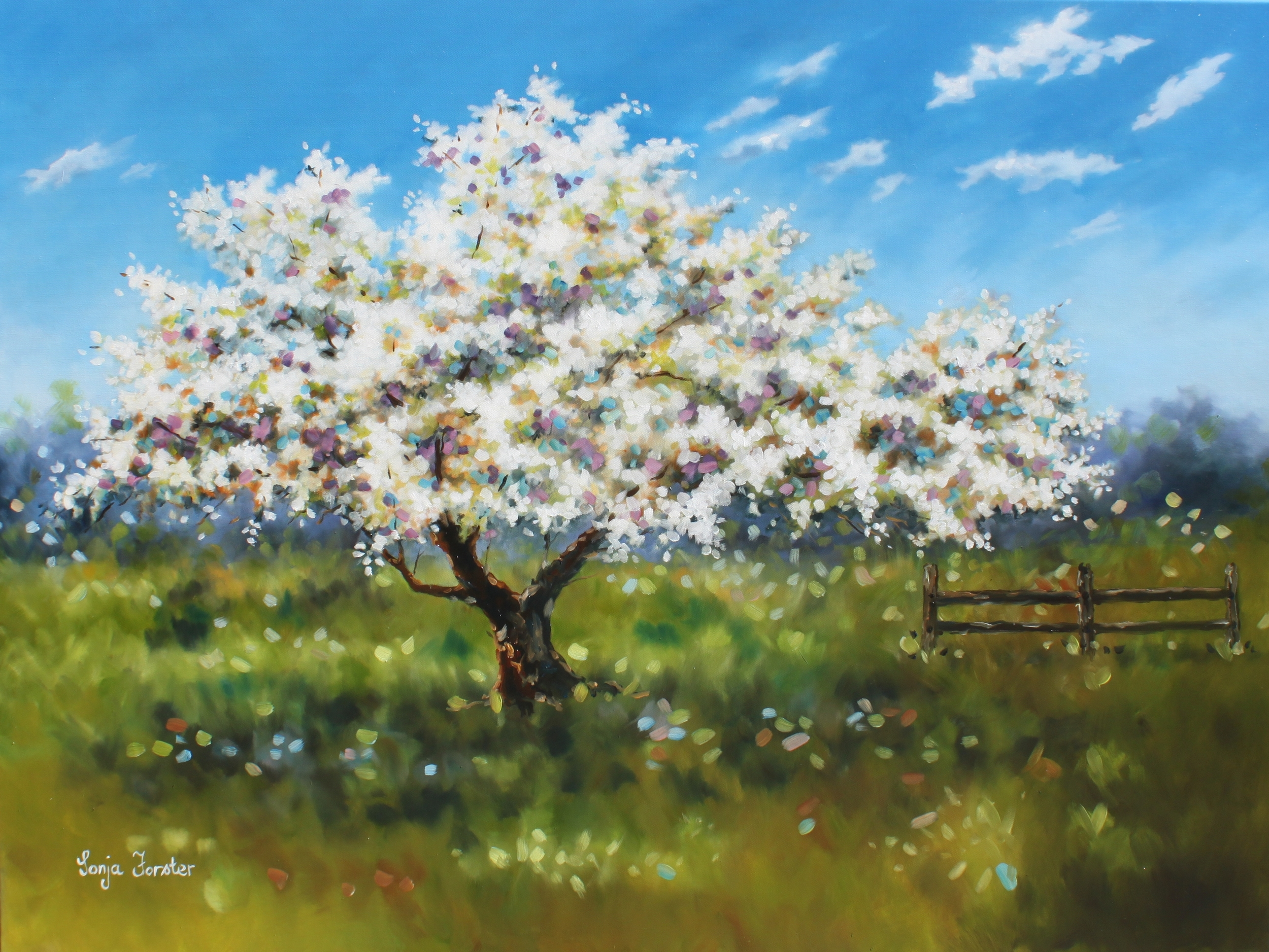 Sonja Forster Art - Tree in Full Bloom.jpg