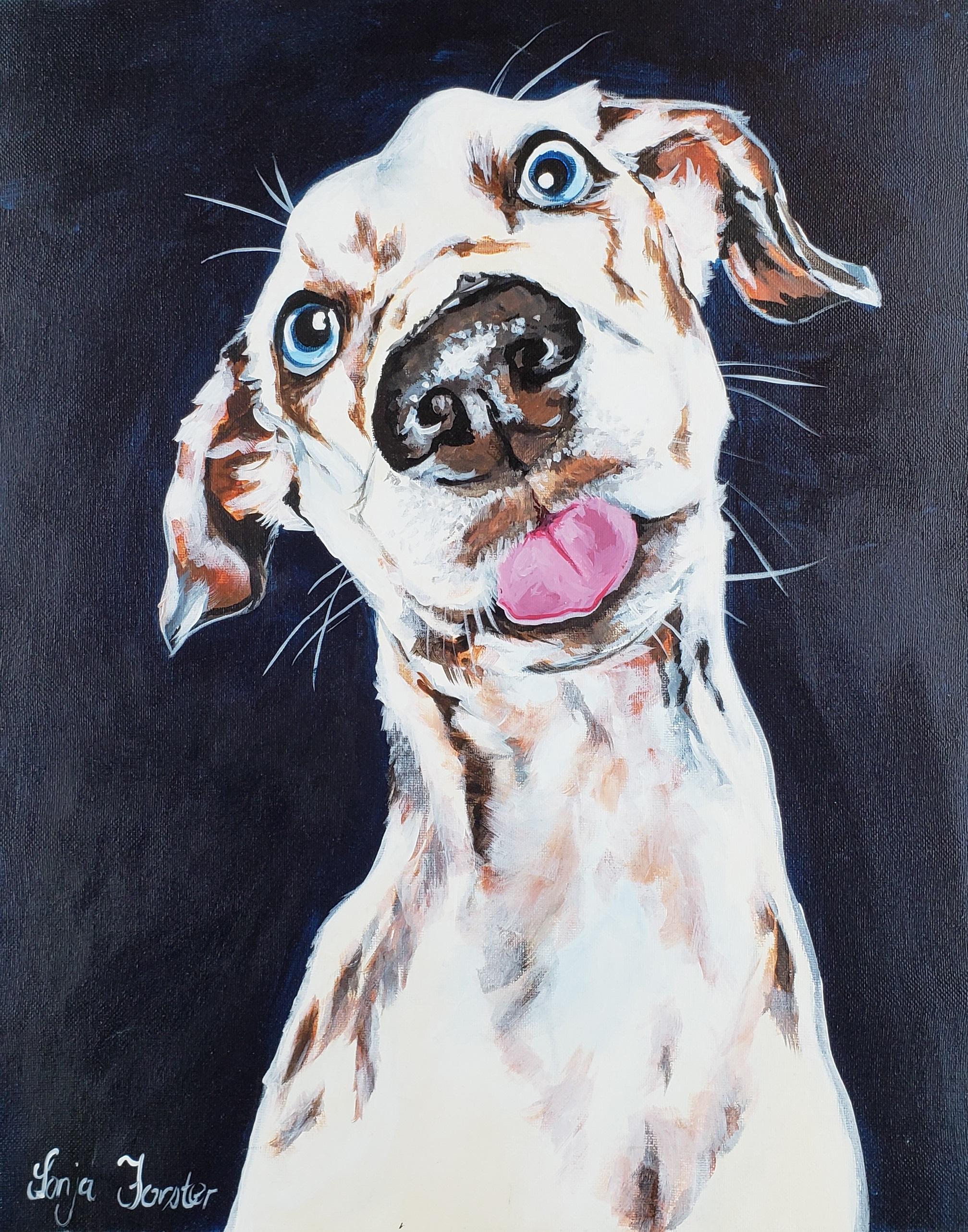 Sonja Forster Art - Paint Your Pet 1_original.jpg