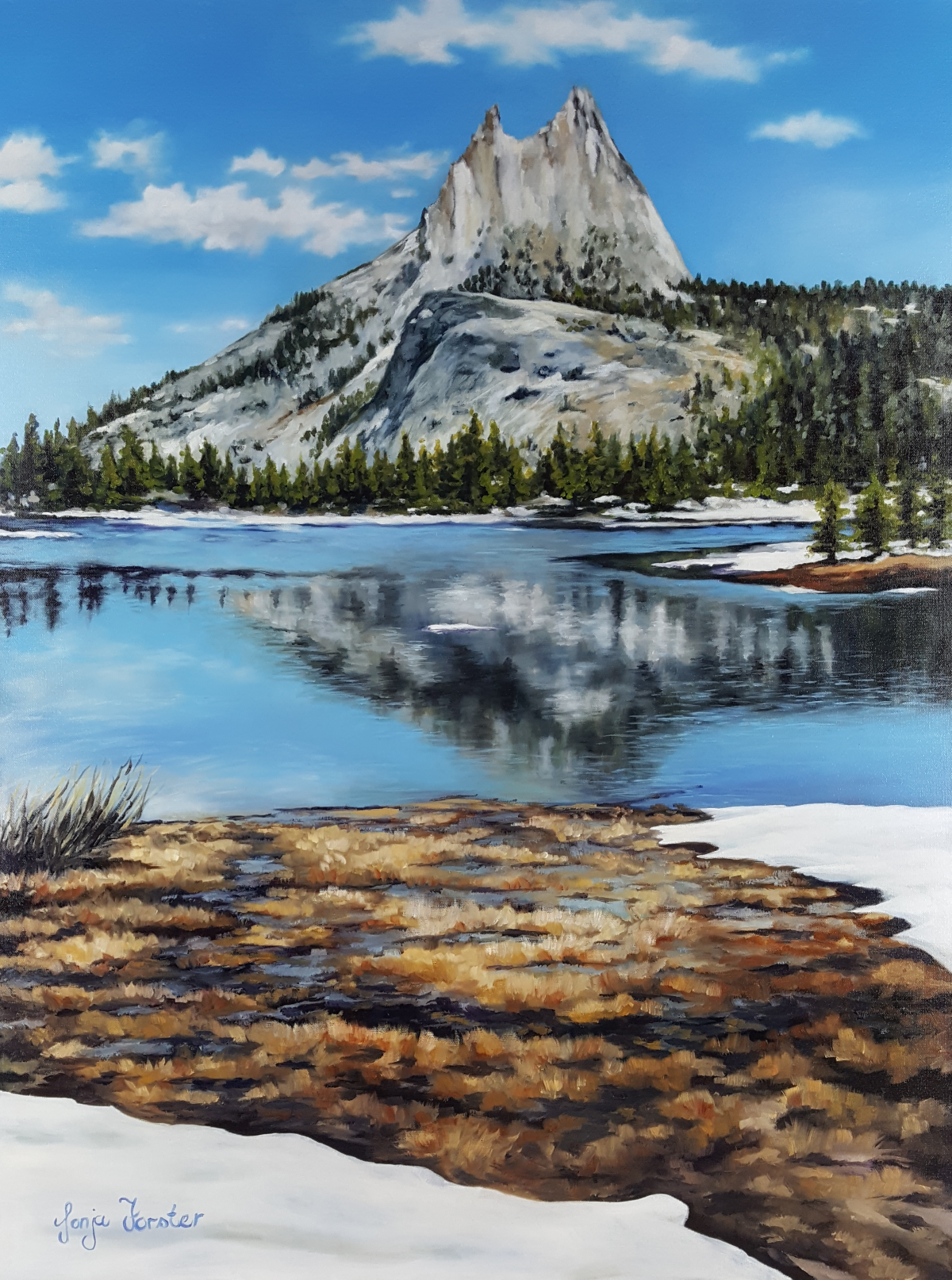 Conquering Yosemite - Oil on blocked canvas | 30